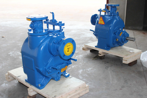 2 Inch Industrial Electric Trash Water Pump with Motor